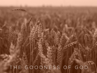 goodness-of-god-2019-orange